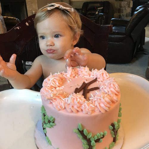 Cool Woodland Deer 1St Birthday Smash Cake Intensive Cake Unit Personalised Birthday Cards Cominlily Jamesorg